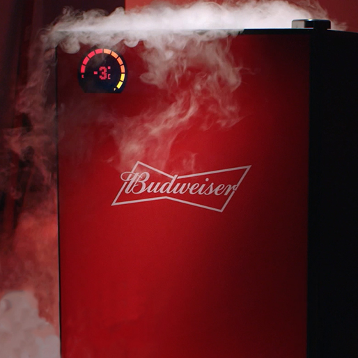 BUDWEISER BUD-E FRIDGE IN CANADA